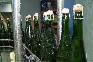 Els pagesos d'Almendralejo creuen que poden doblar encara la seva superfície de vinya sense col·lapsar el mercat