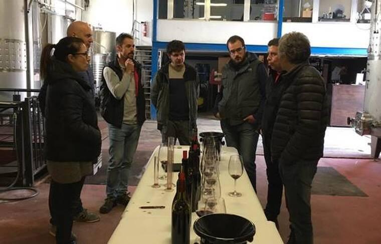 La DO Montsant treurà abans de Nadal un vi solidari amb el celler Rendé Masdeu