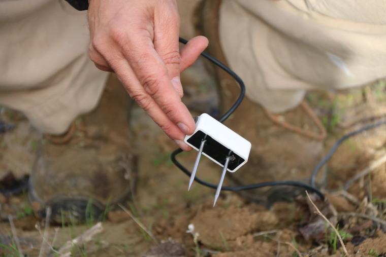Primer pla d'un dels sensors de l'Observatori de la Sequera que s'ha col·locat en una vinya de Sant Sadurní d'Anoia