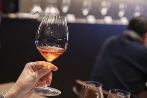 [FOTOS] El tast dels Barcelona Rosé, el glamur de les bombolles roses