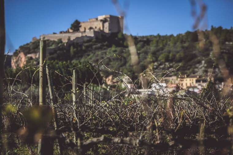 DO Tarragona