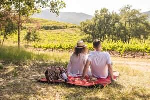 Abadal proposa una nova activitat enoturística, Silenci entre vinyes