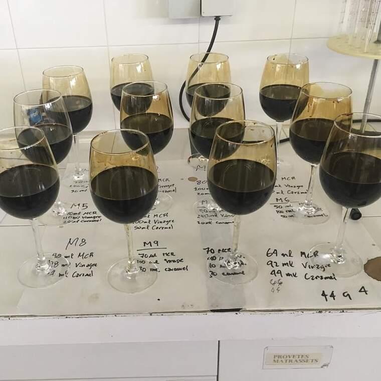 Les classes de tast són molt importants a les escoles agràries de vitivinícultura