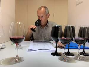 Un dels membres del Panel de Tast de vins de l'Incavi