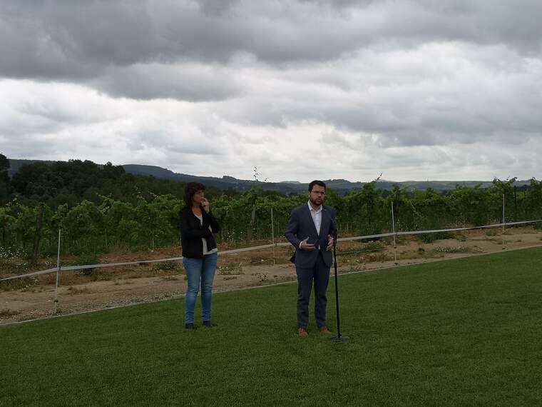 Teresa Jordà i Pere Aragonès en el moment d'anunciar el pla de xoc pel sector vitivinícola