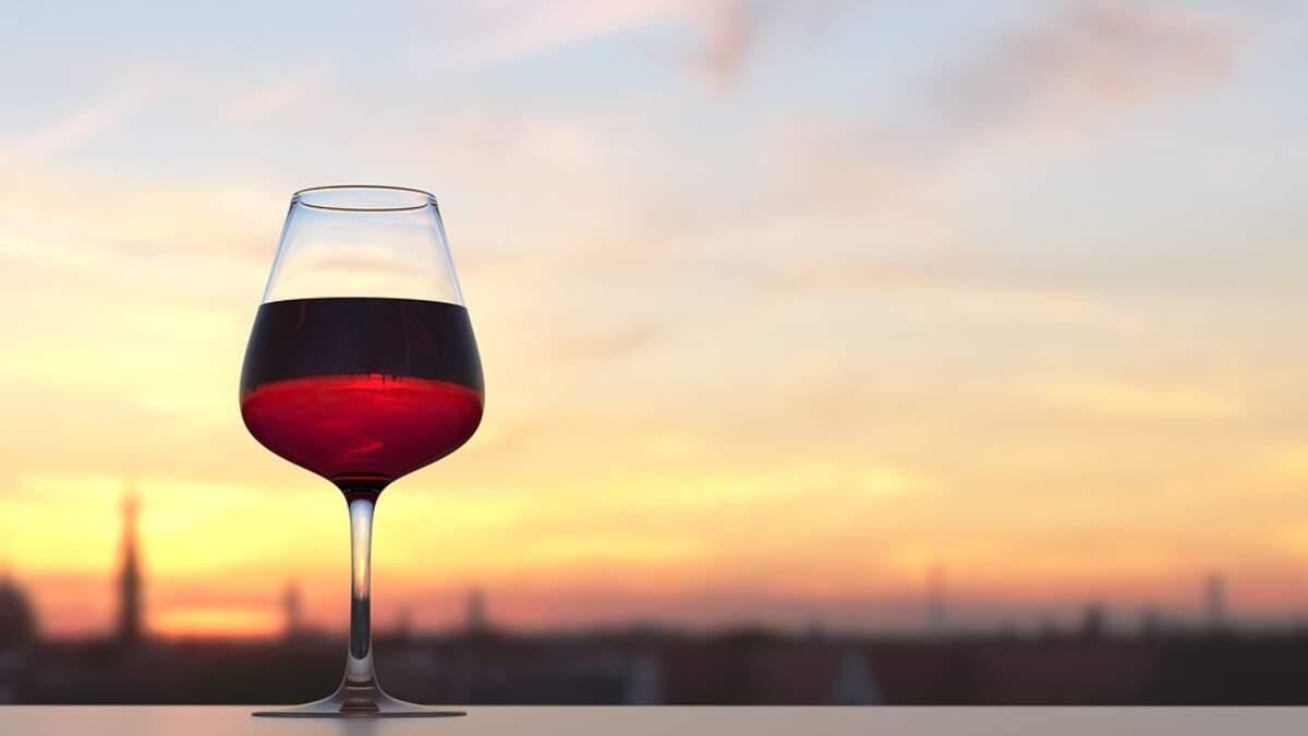 Copa de vi negre jove