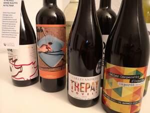 Alguns dels vins novells que s'han presentat aquest dimarts