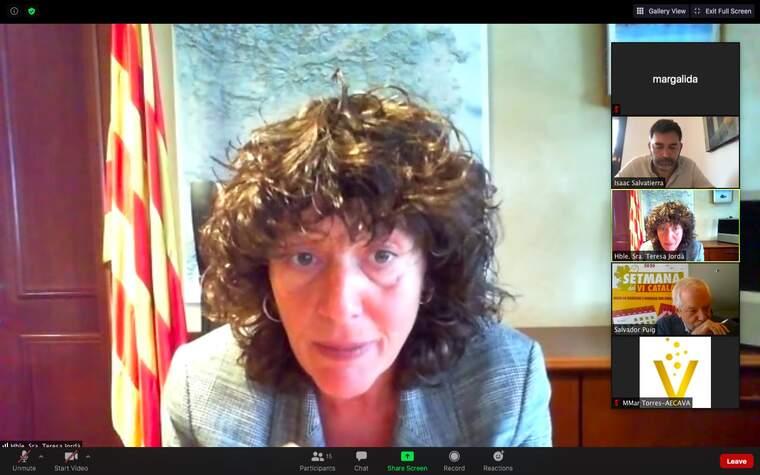 La consellera Jordà en la presentació online de la Setmana del VI Català