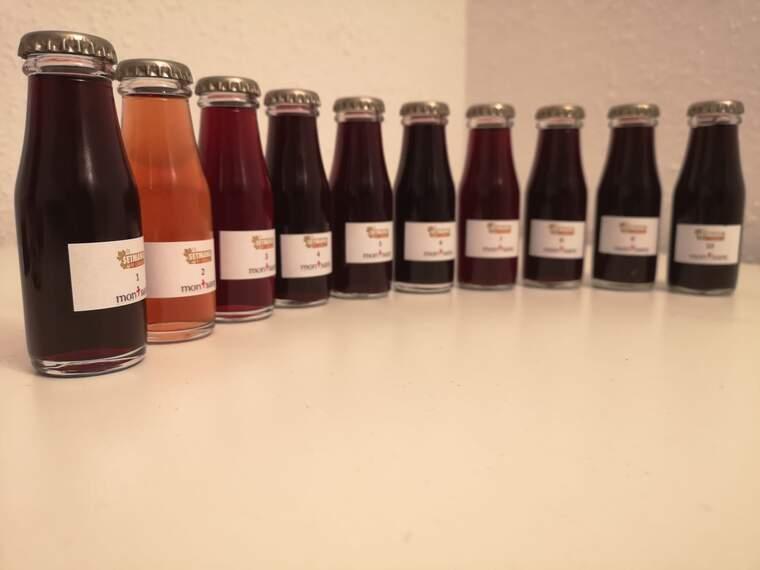 Les ampolletes del tast online que mostren la singularitat de la DO Montsant a través de 10 vins