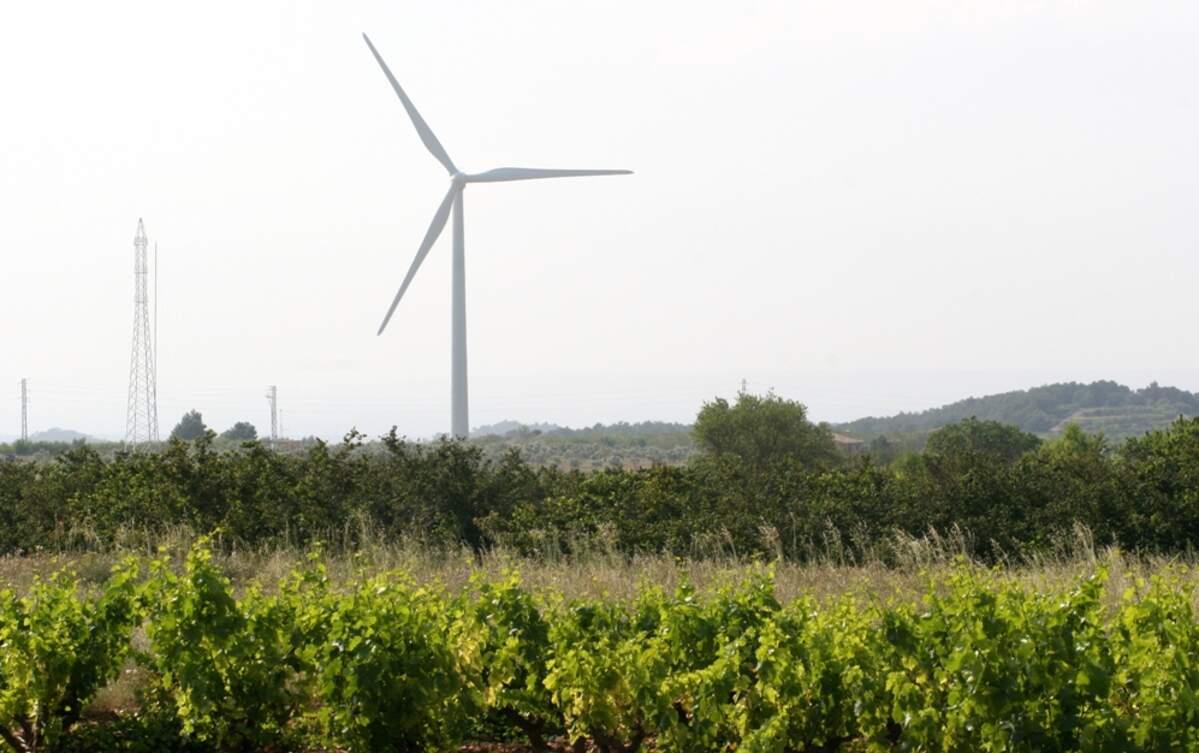 Un molí de vent d'un parc eòlic de la Terra Alta