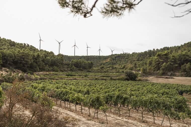 Parc eòlic a les comarques de Lleida