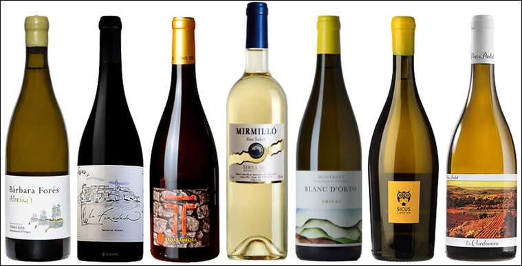 Primers vins brisats catalans moderns