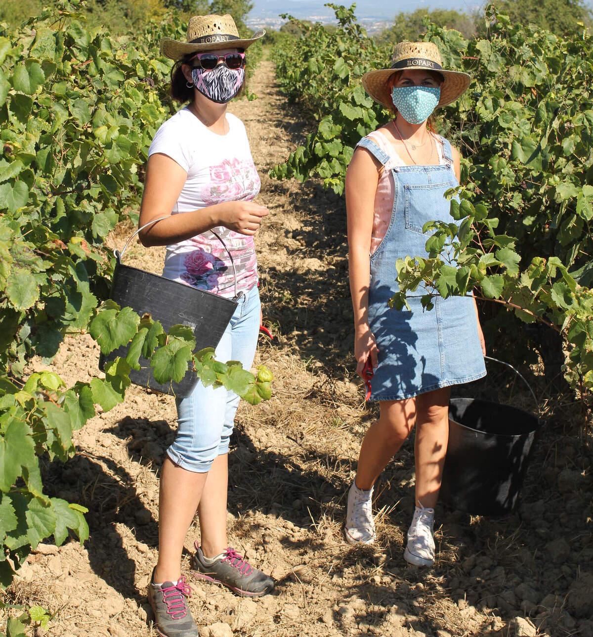 Dues enoturistes enmig de les vinyes de Llopart