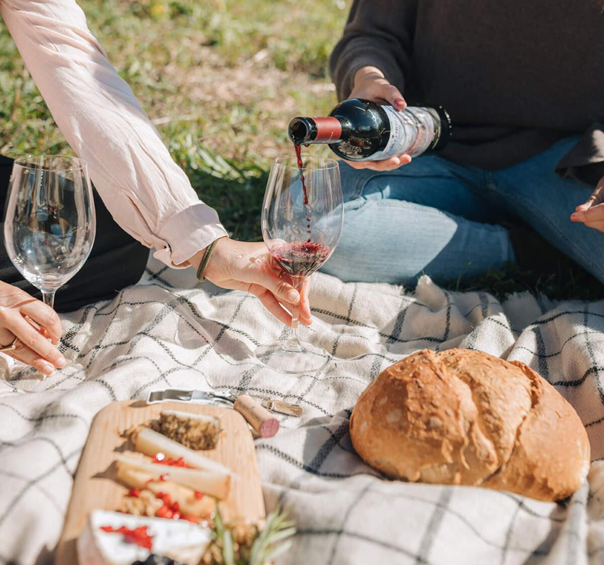 Esmorzar entre vinyes a Albet i Noya