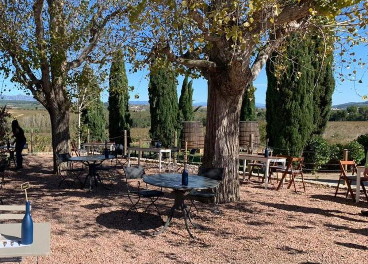 Giró Ribot obre les portes d'un Wine & Cava Bar