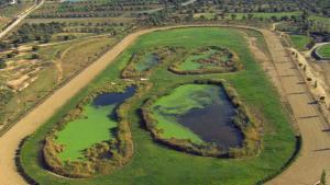 El parc de la Torre d'en Dolça, a Vila-seca, és un dels destins d les pròximes sortides organitzades per Bicicamp.