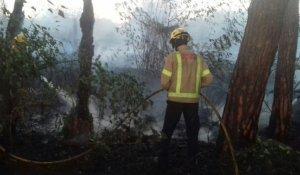 Bombers treballant a l'incendi de la Selva del Camp