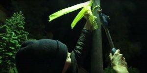 Un grup d'encaputxats treuen els llaços grocs de Vinyols i els Arcs