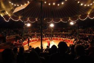 Interior del Circ Raluy.