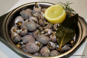 Cargolins de mar (bígars)