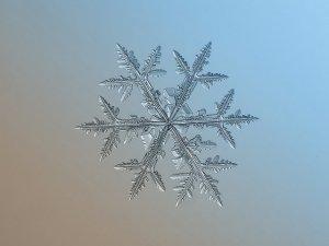 La geometria dels flocs de neu