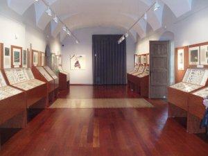 Museu de les Papallones