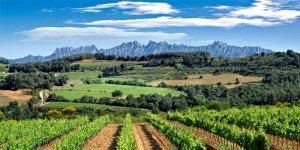 Montserrat ofereix unes vistes espectaculars
