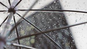 El telèfon d'emergències 112 va rebre una vintena de trucades per l'episodi de pluja a l'Hospitalet.