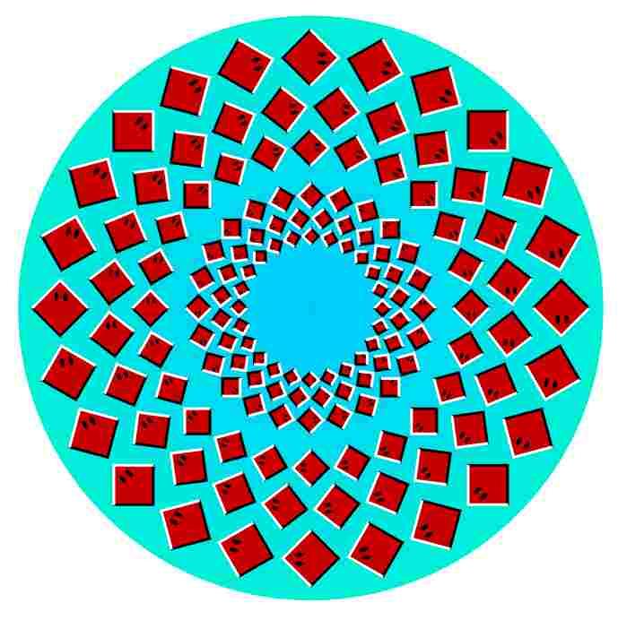 Efecto de anillos que parecen girar.
