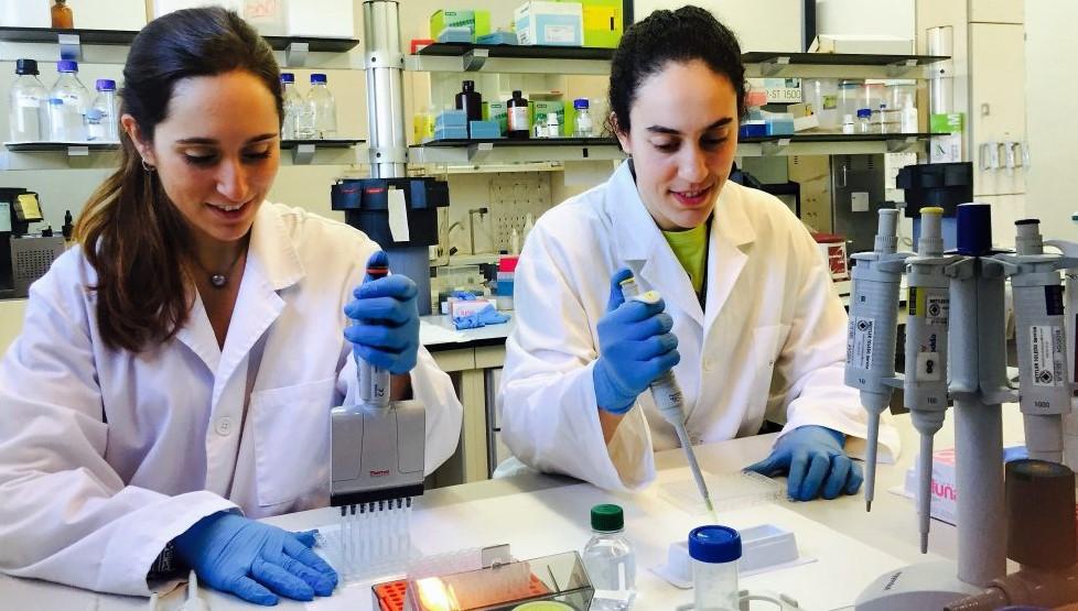Dues investigadores treballant al laboratori de recerca del Departament de Bioquímica i Biotecnologia de la URV