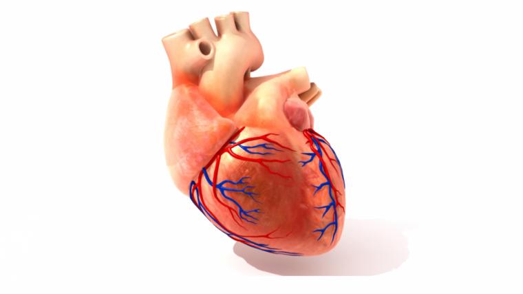 tension baja sintomas causas