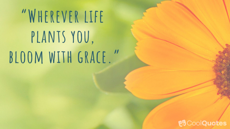 "Positive Life Picture Quotes - ""Wherever life plants you, bloom with grace."""