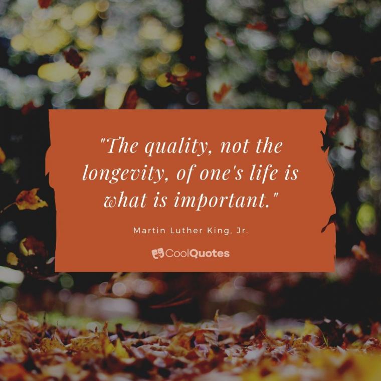 """Cute life picture quotes - """"The quality, not the longevity, of one's life is what is important."""""""