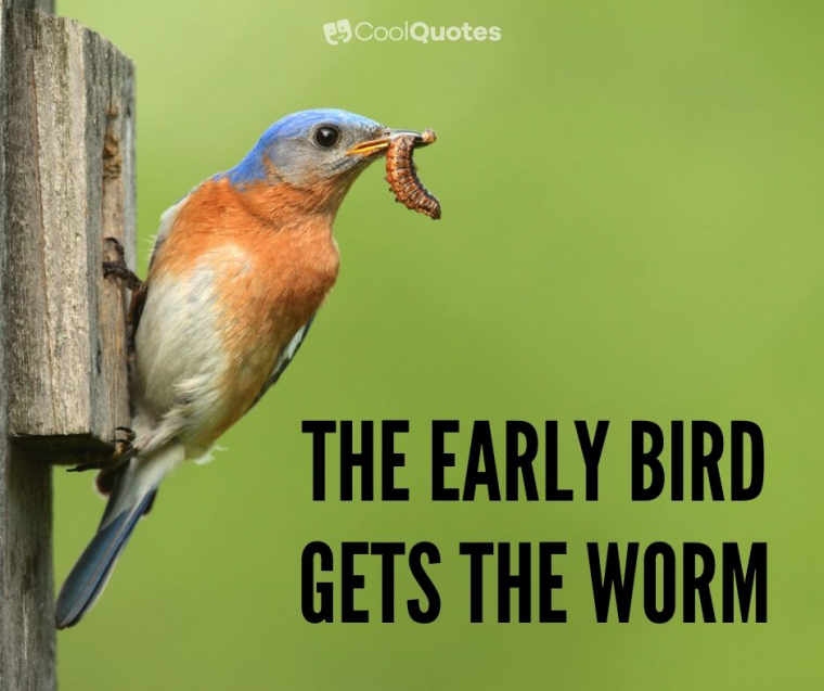 Proverbs - The early bird gets the worm.